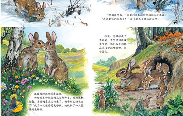 畅销动物百科温情动物故事儿童绘本幼儿图画书